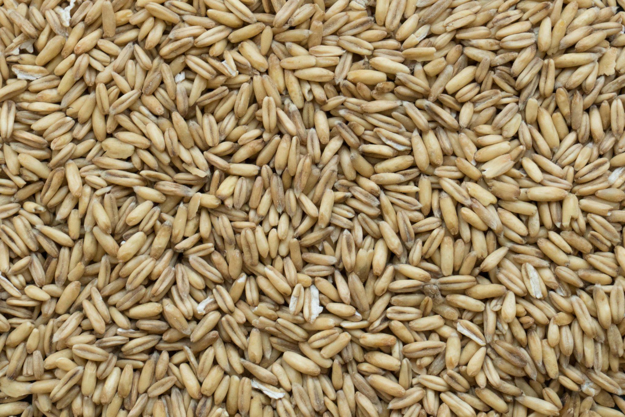 Organic Whole Oat Groats – La Milanaise