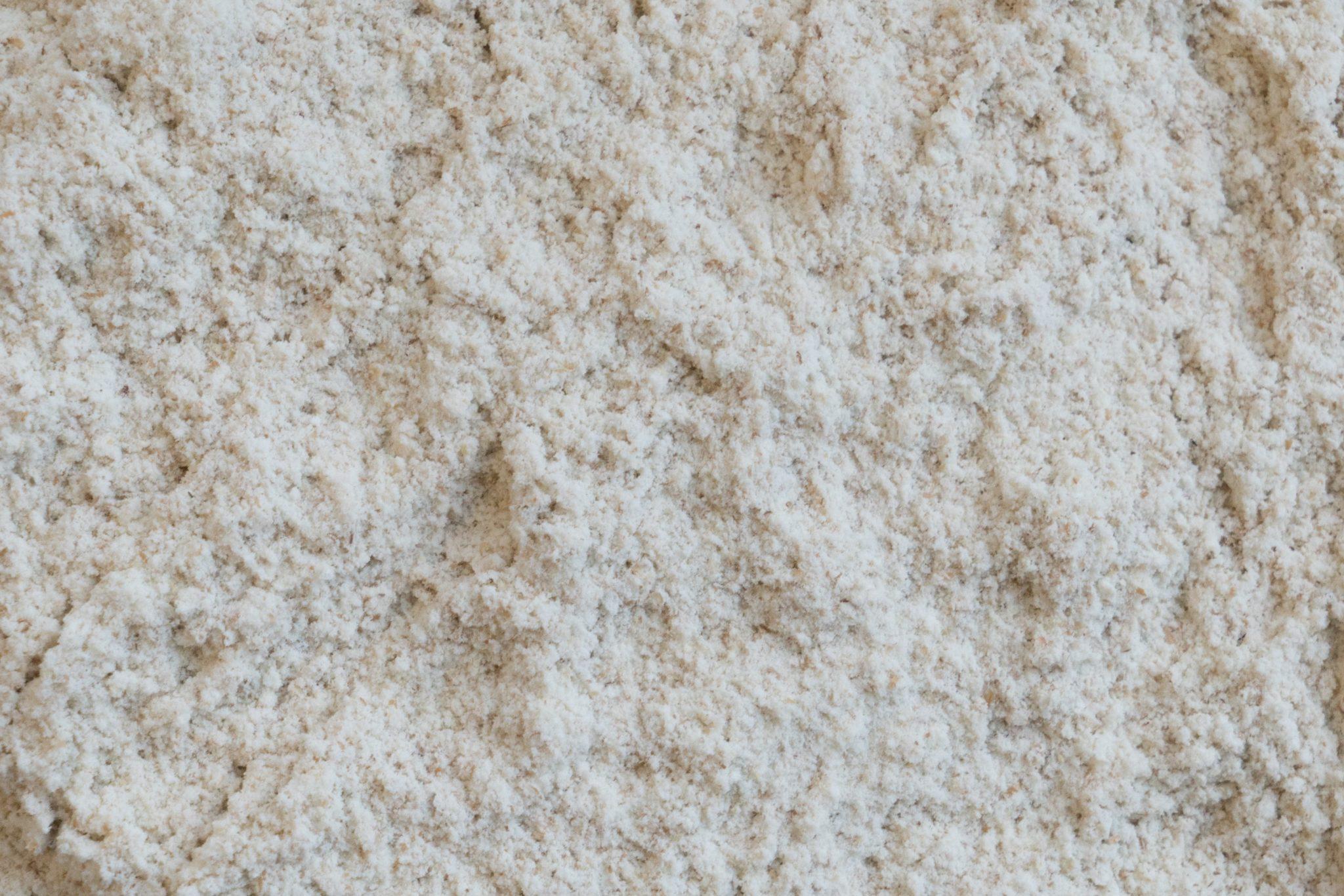 Organic Sifted Wheat (#50) Bread Flour