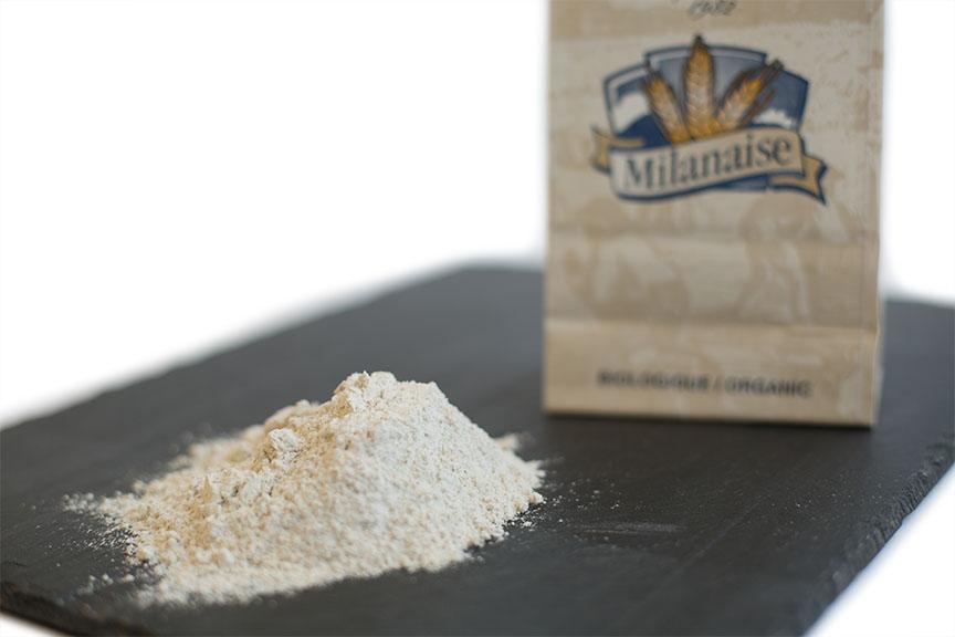 Farine de blé à pain tamisée #50 biologique