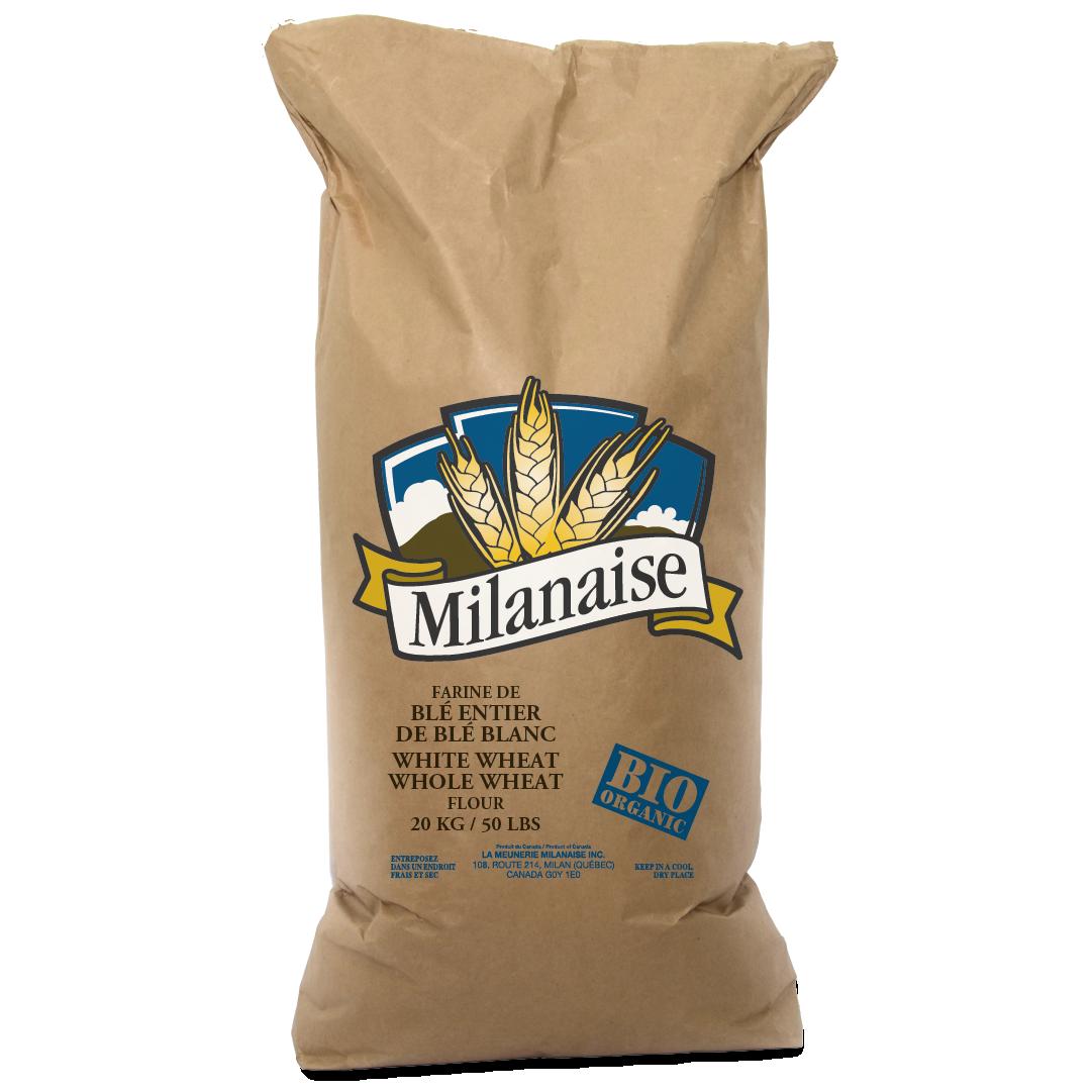 Farine de blé entier de blé blanc biologique